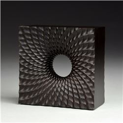 Wormhole Through Dark Matter by Bill Ooms