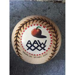 AAW Anniversary Ball