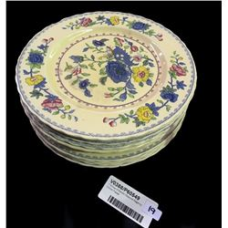 * Group of Eleven Masons Regency Dinner Plates