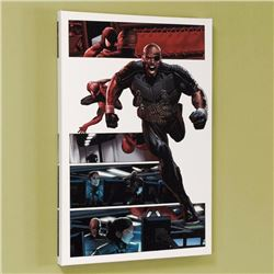 Ultimate Power #6 Limited Edition Giclee on Canvas by Greg Land and Marvel Comics, Numbered with Cer