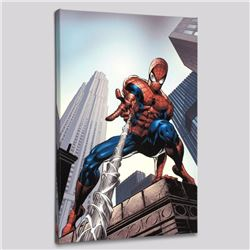 """Amazing Spider-Man #520"" LIMITED EDITION Giclee on Canvas by Mike Deodato Jr. and Marvel Comics, Nu"