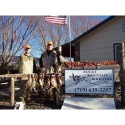 4 Man Pheasant / Chukar Hunt with Rocky Mountain Roosters
