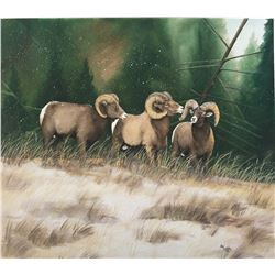 Framed original Watercolor Sheep Painting
