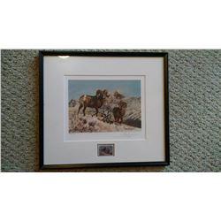 Set of 4 WSF conservation stamp framed prints