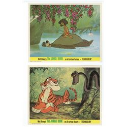 "Collection of  (12) ""The Jungle book"" Publicity Photos."
