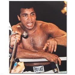 Muhammad Ali! Licensed Photograph of the Heavyweight Champ! - #2798