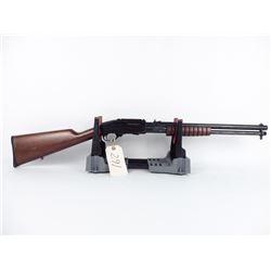 Little .44 magnum pump gun