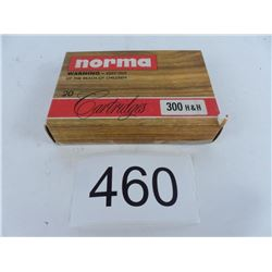 300 H&H 180 grain SP