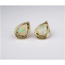 Colorful Ladies Earrings