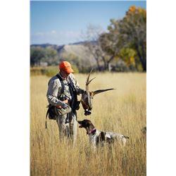 Pheasant, quail & chuckar hunt for two in Utah (2 day/3 nights)