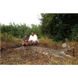 Crocodile or Duiker Hunt for one hunter in Mozambique (7 days)