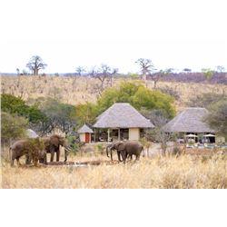 Photographic safari in Tanzania for 2 people (3 days)