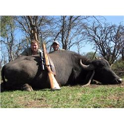 Water Buffalo hunt  in Argentina for one hunter