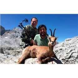 Spanish hunt for Cantabrian Chamois for one hunter (4 days)