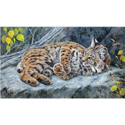 Momentary Distraction- Bobcat, by Leslie Kirchner