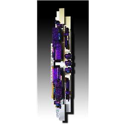 The Purple Totem, by Elizabeth Dunlop