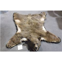 """Double Matted Black Bear Rug- Chocolate Color- Nose to Tail 49""""- Across Front Paws 48""""- Across Back"""