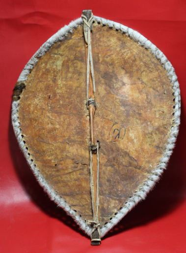AFRICAN MAASAI TRIBAL WARRIOR WAR SHIELD