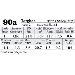 Lot 90a - Targhee