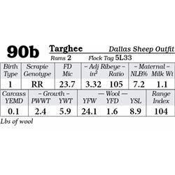 Lot 90b - Targhee