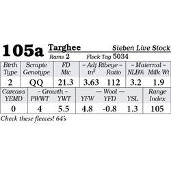 Lot 105a - Targhee