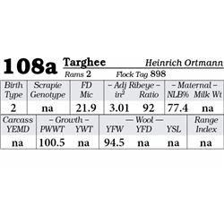 Lot 108a - Targhee