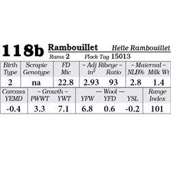 Lot 118b - Rambouillet