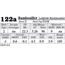 Lot 122a - Rambouillet