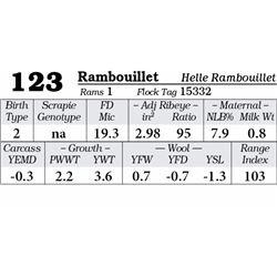Lot 123 - Rambouillet