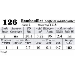Lot 126 - Rambouillet