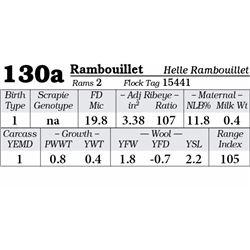 Lot 130a - Rambouillet