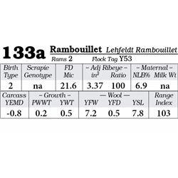 Lot 133a - Rambouillet