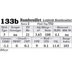 Lot 133b - Rambouillet