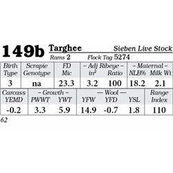 Lot 149b - Targhee