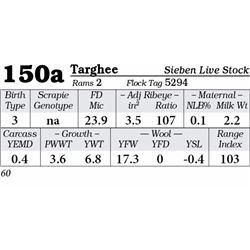Lot 150a - Targhee