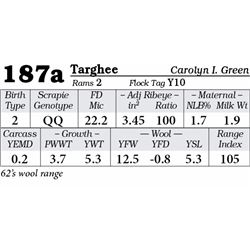 Lot 187a - Targhee