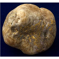 Large Gold in Quartz Salmon River Specimen