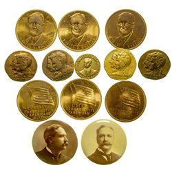 Montana Political Pins and Tokens