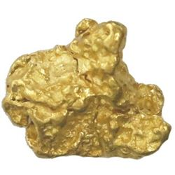 Natural gold nugget, 8.81 grams, from the Feather River in California.