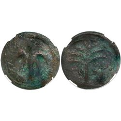 Judaea, AE middle bronze, Bar Kokhba Revolt, 132-135 AD, encapsulated NGC Choice VF, strike 4/5 and