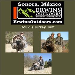 5-day Gould's Turkey Hunt for Two Hunters