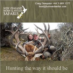 1 - 4 hunters on a 1x1 red stag hunt in The South Island of New Zealand