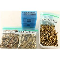 Lot of .223 Brass & Ammo