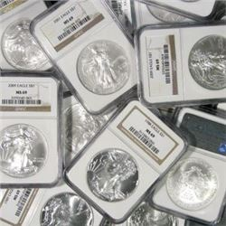 (10) NGC or PCGS MS 69  Silver Eagles