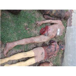 ZOMBIE AUTOPSY DEAD BLOODY ROTTEN ZOMBIE BODY 12