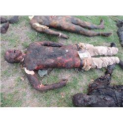 ZOMBIE AUTOPSY DEAD BLOODY ROTTEN ZOMBIE BODY 14