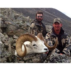 10 DAY 1 ON 1 YUKON DALL SHEEP HUNT