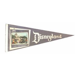 Disneyland 3-D Photo Pennant.