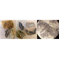 The Original Ophir Mine High Grade Hand Specimens