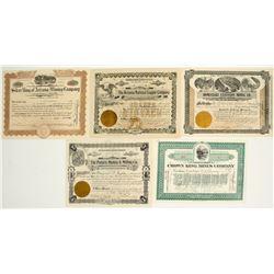 Arizona Mining Stock Certificate Collection 5